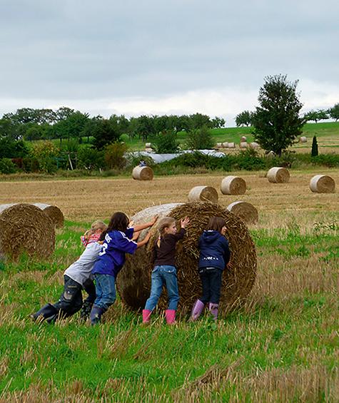 Kinder rollen Strohballen