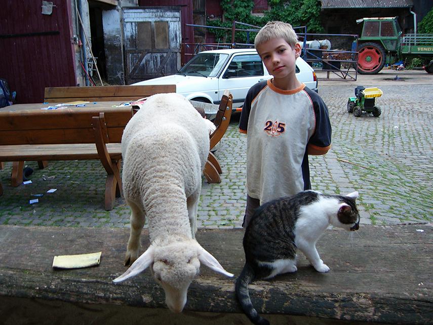 Junge mit Schaf und Katze