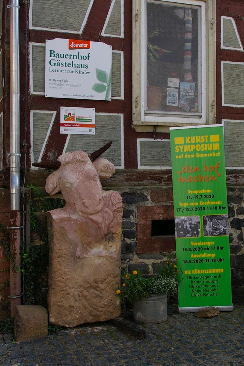 Die Kuh in der Hofeinfahrt